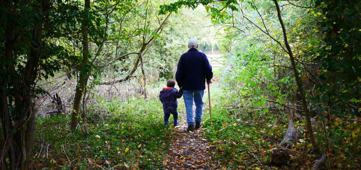How important are grandparents?